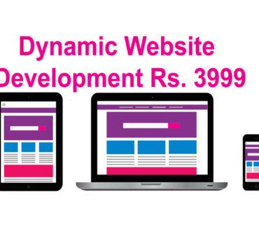 Dynamic Website development Rs. 3999